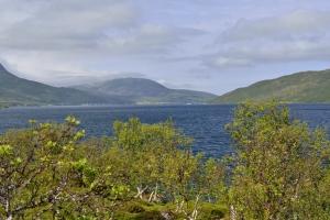 Fjord...