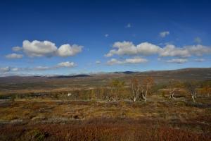 Blick auf die Furuhaugli Fjellstation