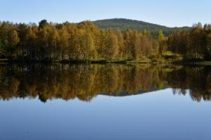 Herbst in Sveg