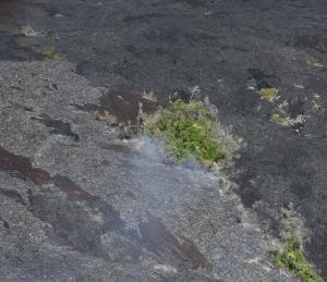 Lavafluss (heute unterirdisch) und teilweise brennende Bäume