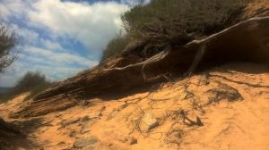 Bei den Klippen am Shipwreck Beach