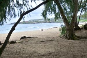 ...auch Shipwreck Beach