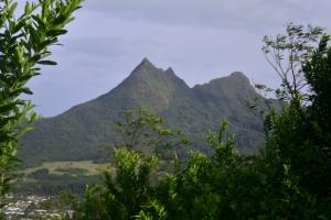 Pali Highway (bekannt aus Hawaii Five-0)