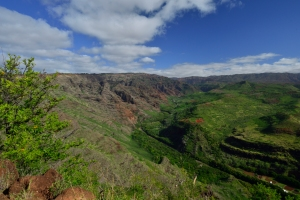 Blick in den Waimea Canyon vom Eingang her